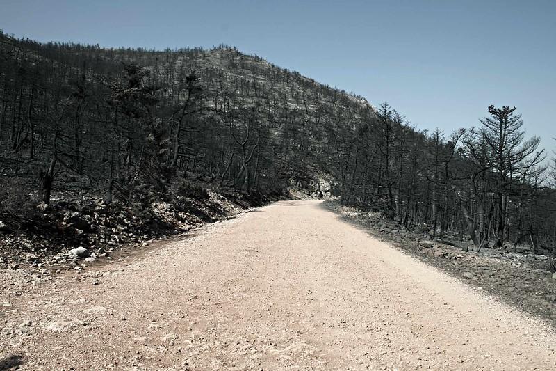 Δρόμος χωρίς γυρισμό.jpg