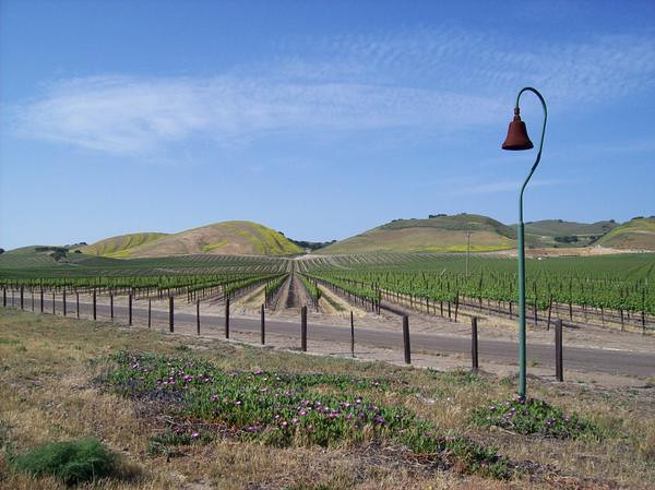 California Wine Country Route, Route 101