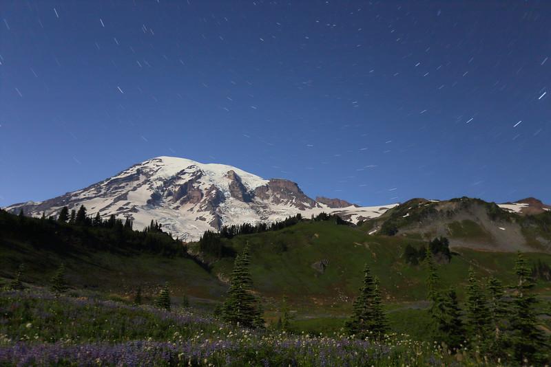 Mt. Rainier - 100.JPG