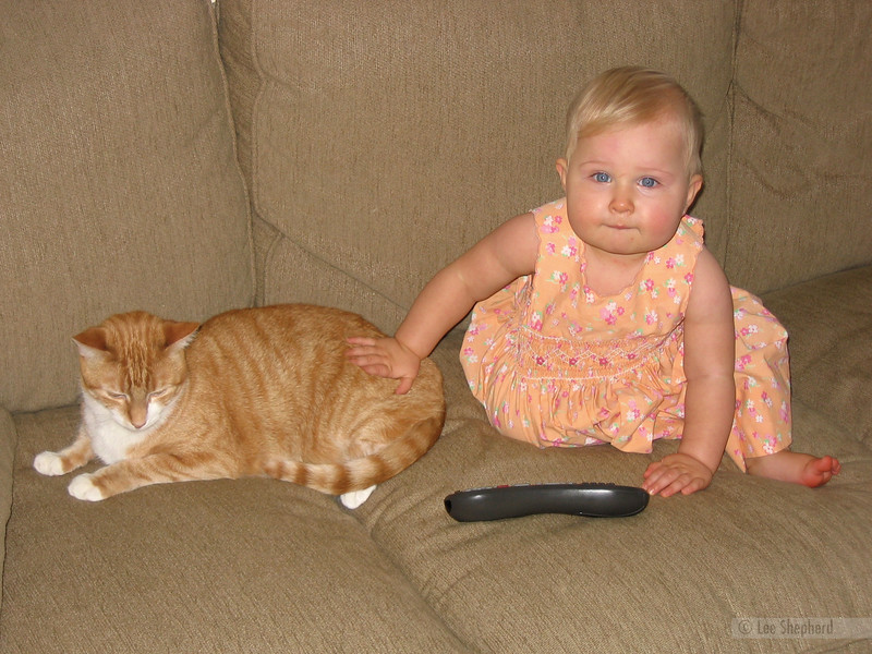 See, I can play nice with the kitty.  We're buddies now.