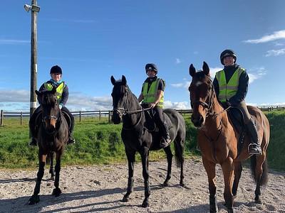 Retired Racehorses