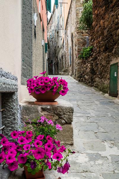Italy - 2015-1539.jpg