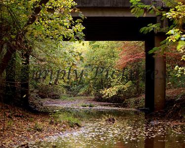 Lanana Creek040