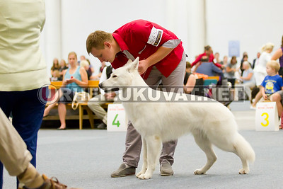 2014.8.FCI.WORLD.DOG.SHOW_Helsinki