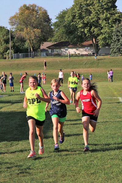 LES Cross Country Meet 2017