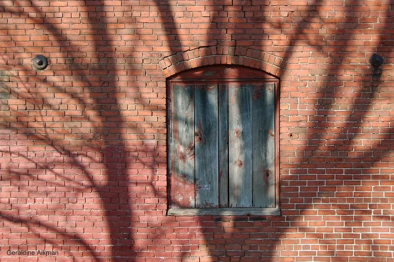geraldine_aikman_portland_co_shadows.JPG