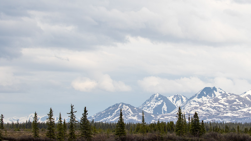 Landscape Seen From McKinley Explorer