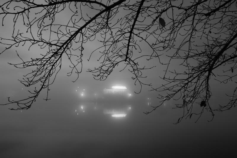 Fog over the Tidal Basin