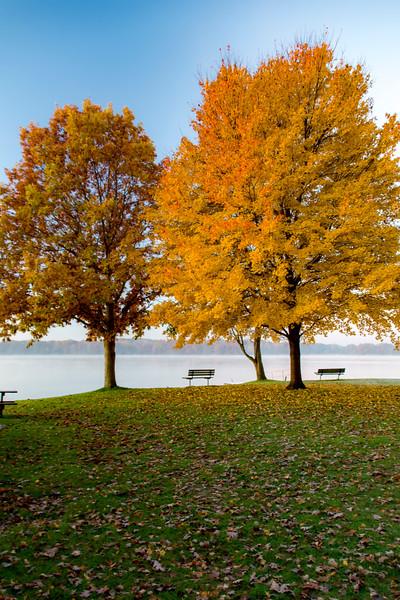 Fall-color-WingfootLakeSP-Nov11b.jpg