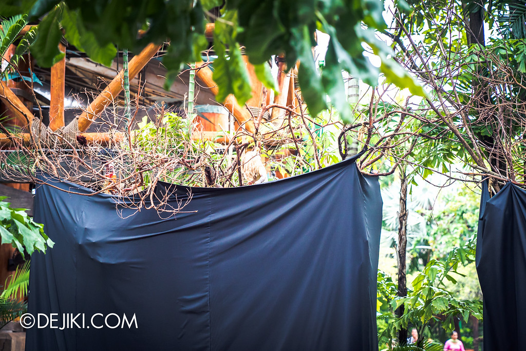 Universal Studios Singapore - Halloween Horror Nights 6 Before Dark Day Photo Report 2 - Suicide Forest trees wrapped up