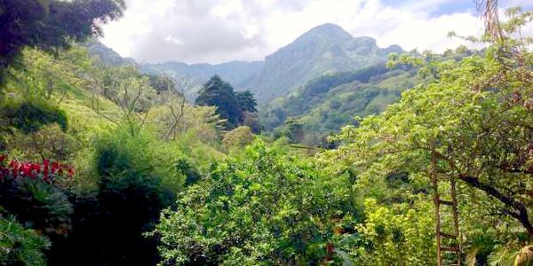 Joanna-San Antonio de Escazu Mountain Home for Sale or Rent