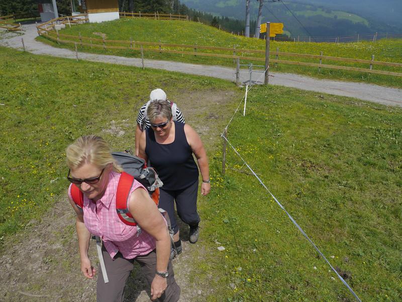 @RobAng 2013 / Bergspaziergang Hochybrig, Ibergeregg, Oberiberg, Kanton Schwyz, CHE, Schweiz, 1492 m ü/M, 2013/07/07 11:38:05