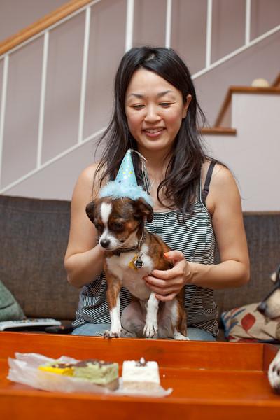 Dog-sushi-halloween2-22.jpg