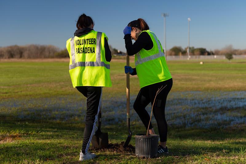 Tree Planting_Crenshaw_Preston__2020_029.jpg