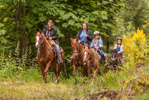 Back Country Horsemen of Washington