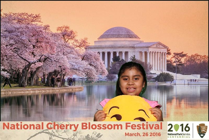 Boothie-NPS-CherryBlossom- (400).jpg