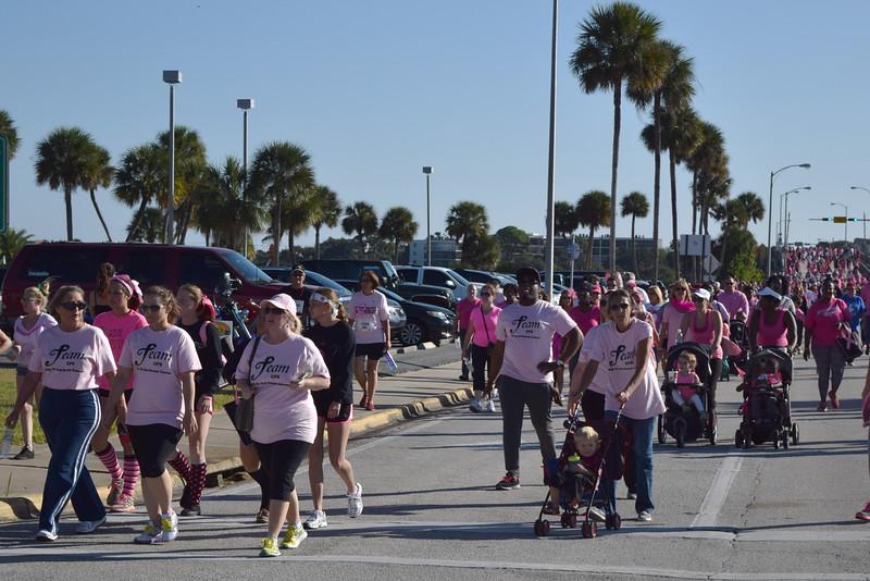 2014 Making Strides Against Breast Cancer in Daytona Beach (241).JPG