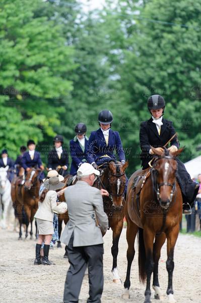 Upperville Side Saddle 2013
