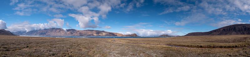 Tundra on the alluvial plains