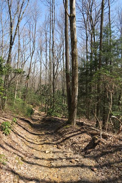 Ridge Trail - 3,280'
