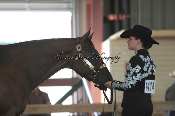 Showmanship All classes