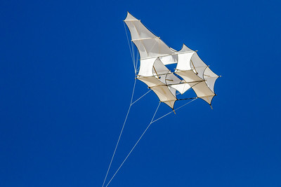 Event - Kite Festival