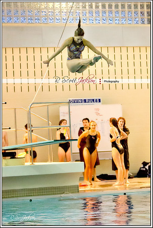 2014 District Diving