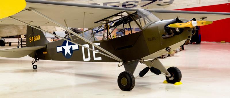 PiperL-4Grasshopper.jpg