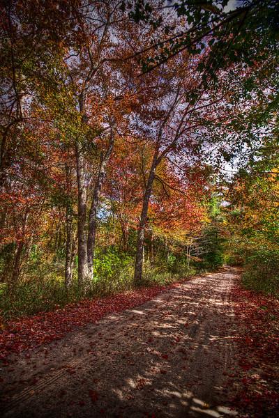 """""""Colorful Road Leaving The Ledge Area"""""""