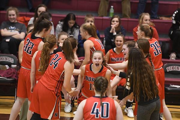 Varsity Girls Basketball vs Waverly Districts