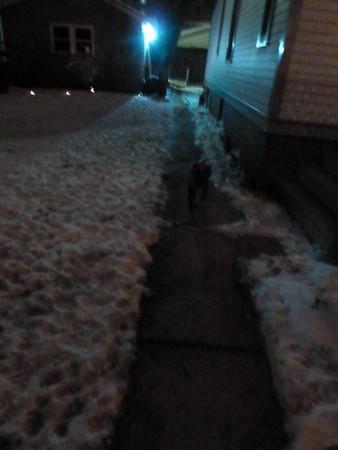 2011 Feb Blizzard