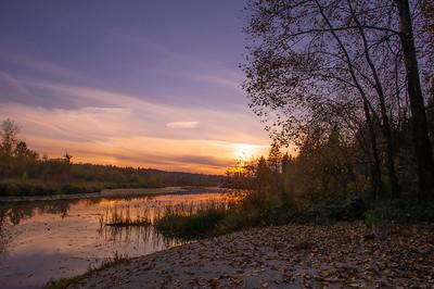 Burnaby Lake (Makayla)