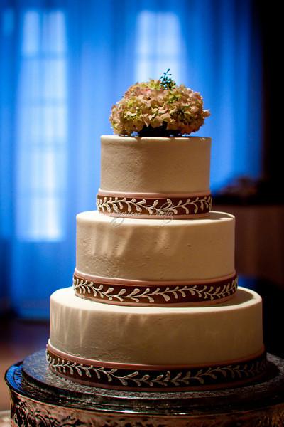 Cake Cutting - Lisa and Jeremy