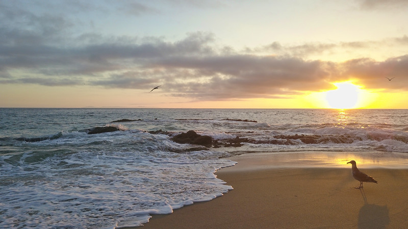 1000 Steps Laguna Beach