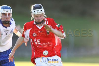 Glenealy IHC Final 2012