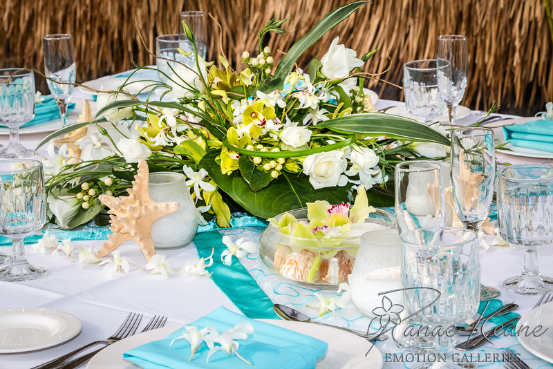 004__Ranae_Keane_Hawaii_Destination_Wedding_Photographer_Ranae_Keane_www.EmotionGalleries.com__140505.jpg