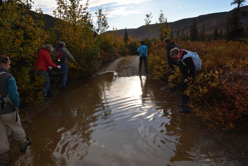 Alaska Fall 2013 - 173.jpg