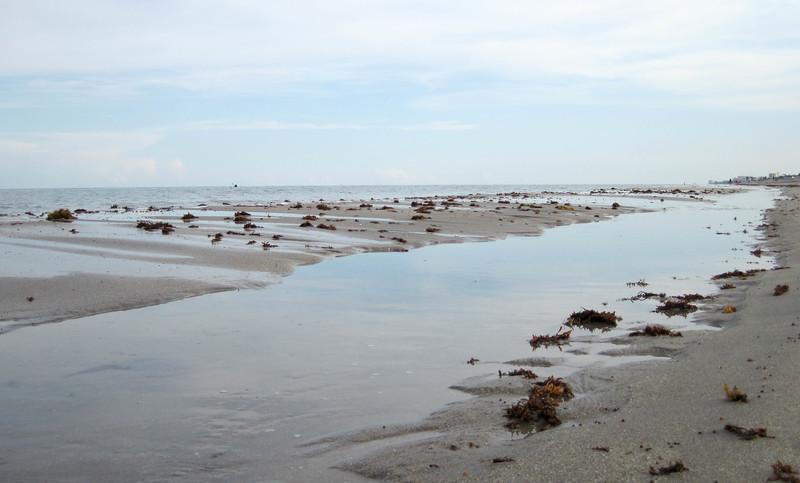 beach-paddle-10.jpg