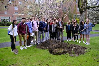 4/26/19: Arbor Day