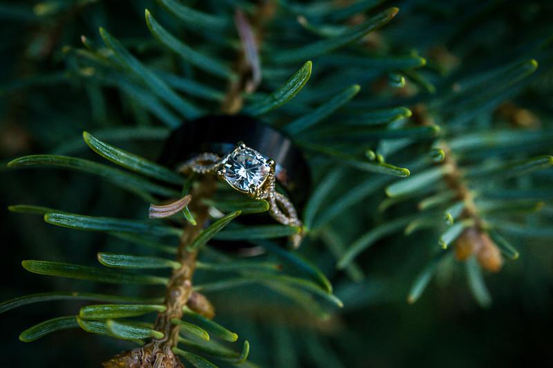Corinne Howlett Wedding Photo-583.jpg