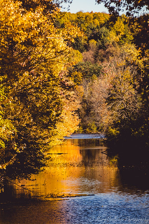 Autumn in Central New York