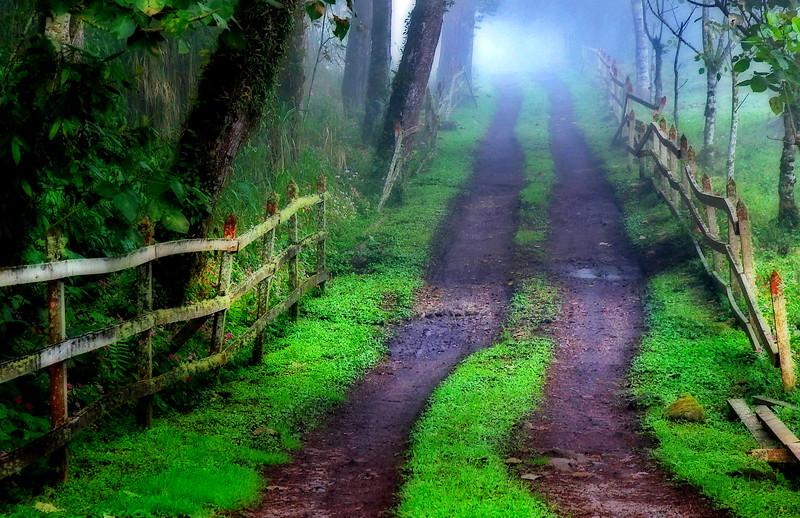 The Unkown* Costa Rica, path, roads,rustic, fences
