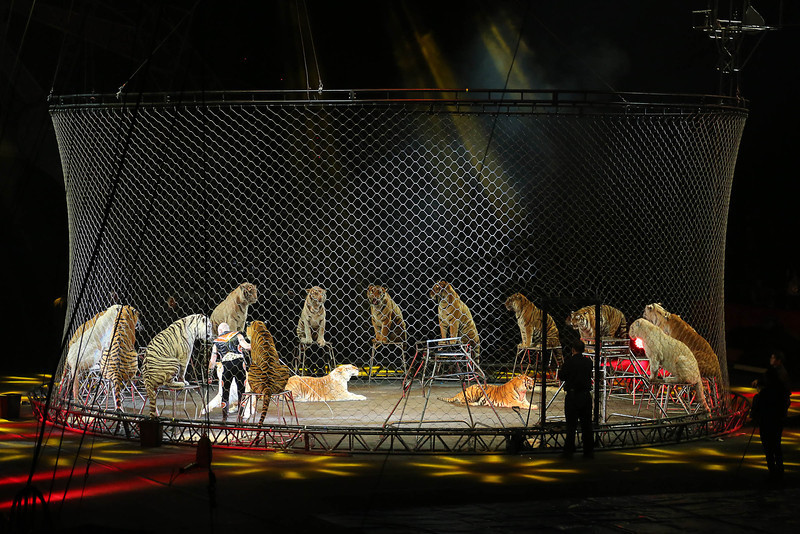 Circus_22.jpg
