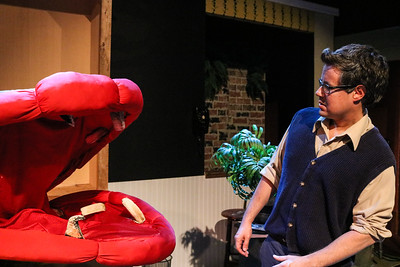 giant-blood-thirsty-plant-comes-to-life-in-tyler-civic-theatres-little-shop-of-horrors