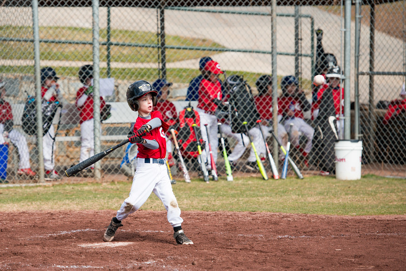 NYO Reds Baseball (15 of 45).jpg