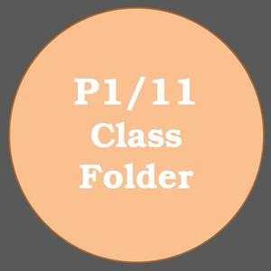 P1/11 ACTIVITIES