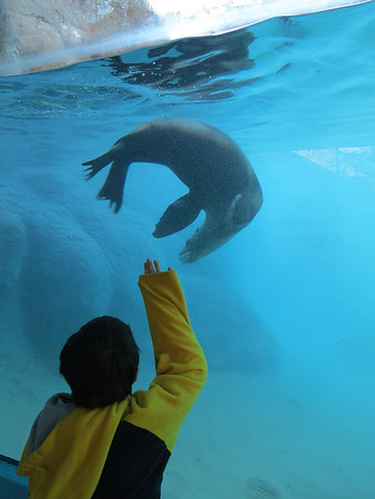 NC Zoo 011714