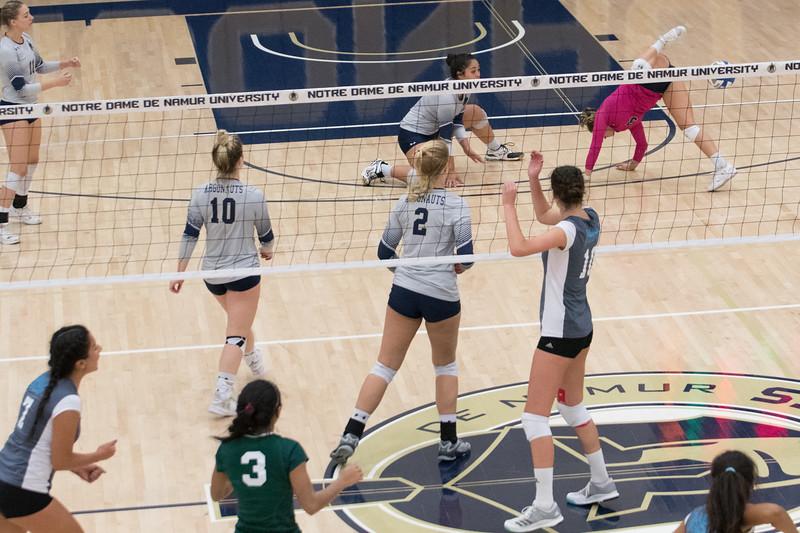 HPU Volleyball-92910.jpg