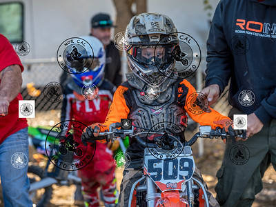 Race 4 65cc Beg