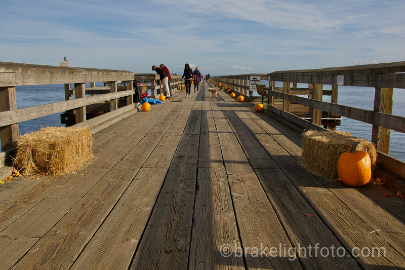 Sidney Fisherman's Wharf